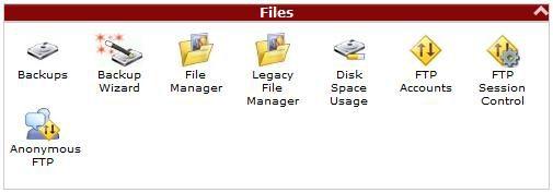 cpanel-files